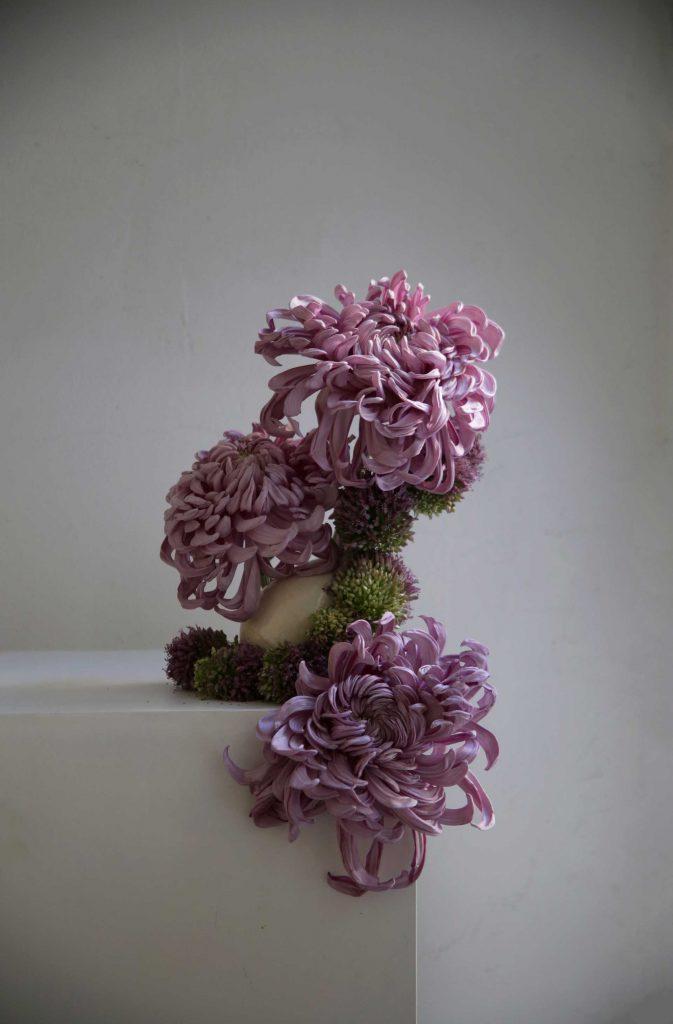 """""""Crisantemus allium"""" - Violeta Gladstone"""